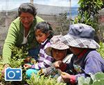 Una madre en Quito, Ecuador, comparte sus conocimientos agrícolas con niños.